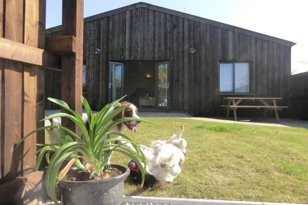 Gulval Farm Cottages - Garden